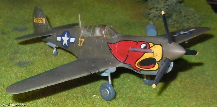 Curtiss P40N Warhawk Roosters